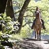 45% Off Horseback Ride for Two