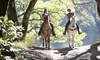 JR Farms - Jackson: One-Hour Trail Ride for Two or Three Private or Semiprivate Riding Lessons at JR Farms (Up to 34% Off)