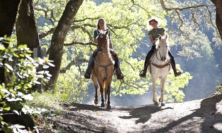 Horseback Ride for One or Two, or Horseback Ride with Intro Lesson (Up to 50% Off)