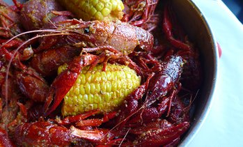 28% Off at Chasin' Tails Cajun Seafood & Bar