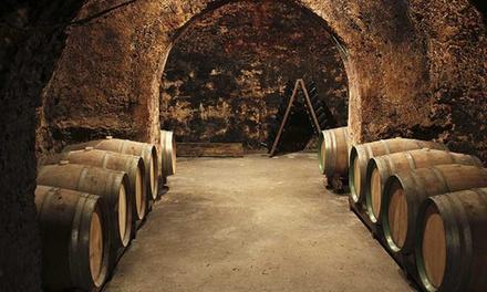 Visita de las Bodegas Jesús Díaz e Hijos y degustación de sus vinos para dos, cuatro o seis personas desde 9,90 €