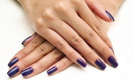 One or Three Classic or Shellac Mani-Pedis at Spa Chic (Up to 58% Off)