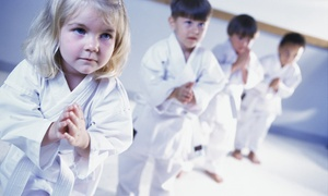 Pope's Tiger Rock Martial Arts Academy: Four Weeks of Unlimited Martial Arts Classes at Tiger-Rock Martial Arts (50% Off)
