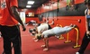 H2 Heaven and Hell Fitness - H2 Heaven and Hell Fitness: Unlimited Boot-Camp Classes or Kid's Camp at H2 Heaven and Hell Fitness (Up to 75% Off)