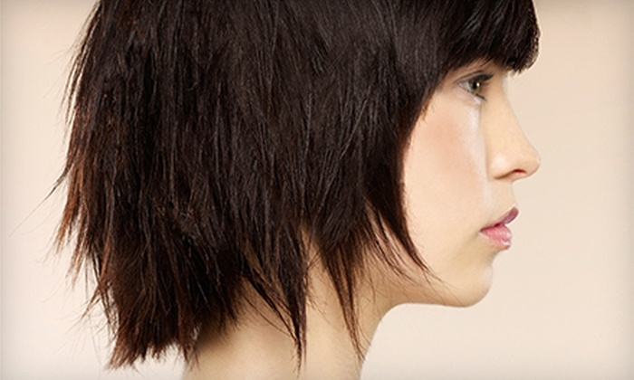 Luxe Salon and Spa - Bay Terrace: Haircut and Conditioning Treatment with Optional Color or Partial Highlights at Luxe Salon and Spa (Up to 78% Off)