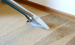 Serious City Services: Carpet Cleaning from €22 with Serious City Services