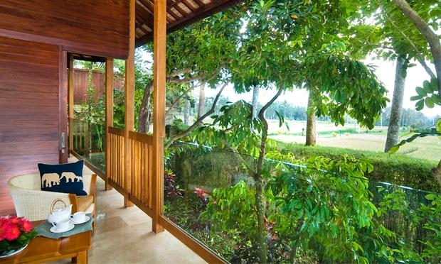 Bali: 5* Lodge + Elephant Safari 4