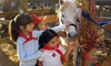 Fiesta Farm - San Antonio: Petting-Zoo Outing with Pony Rides for Two or Four at Fiesta Farm (Up to 54% Off)