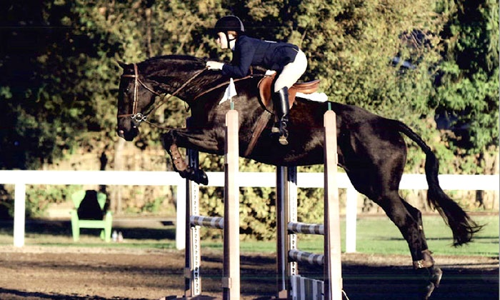 High Standard Equestrians - Elk Grove: One or Three Private One-Hour Horseback-Riding Lessons at High Standard Equestrians in Elk Grove (Up to 56% Off)