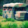 Up to 55% Off Wilderness Eco-Tours