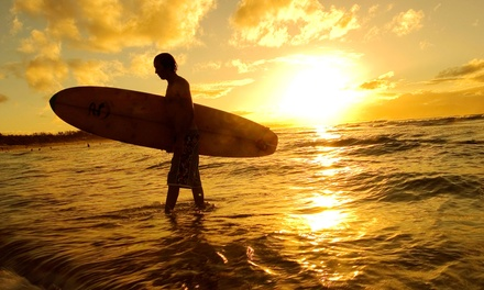 Board and Wetsuit Rentals, Lessons, or Five-Day Camp at Venice Beach Surf School (Up to 70% Off). Six Options Available.