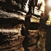 Up to 44% Off Bonnechere Caves Tour