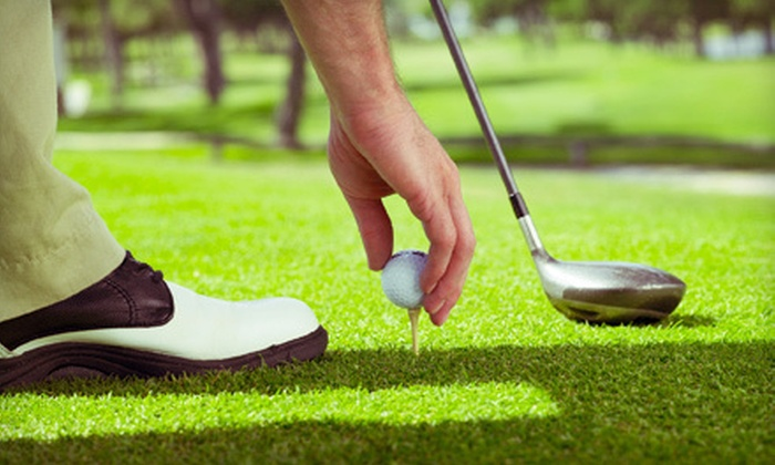 Banner Country Club - Black Birch Golf: 18-Hole Round of Golf with Cart Rental for One, Two, or Four at Banner Country Club (Up to 55% Off)