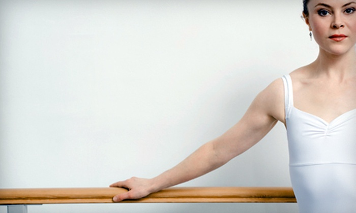 The Mind Body Studio - South Belvidere: $25 for Five Barre Classes at The Mind Body Studio ($60 Value)
