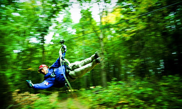 Big Bear Ziplines - HYDE APRK: Zipline Tour for One, Two, or Four at Big Bear Ziplines (Up to 54% Off)