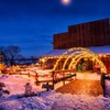 Up to 50% Off Holiday Lights and Wildlife Tour