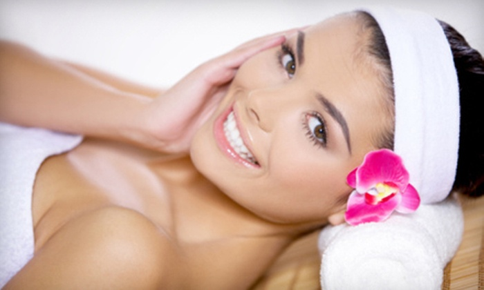 Elite Laser and Skin Spa - Algonquin: $45 for a Body Scrub, Microdermabrasion, and Volcanic-Ash Mask at Elite Laser and Skin Spa in Algonquin ($165 Value)