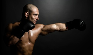 Velocity Martial Arts: Martial-Arts Classes at Velocity Martial Arts (Up to 65% Off). Three Options Available.