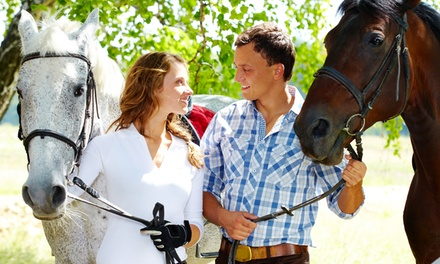 30- or 60-Minute Spring Fling Trail Ride from Horse Healing Adventures (Up to 50% Off)