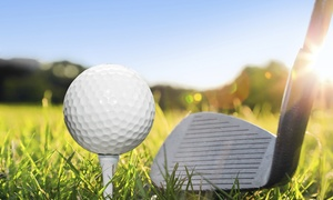 Paul Roberts Golf Centre: Paul Roberts Golf Centre: Two 30-Minute PGA Pro Lessons for £12 (70% Off)