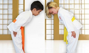 Aguiar Karate: One or Two Groupons, Each Good for One Month of Karate Classes at Aguiar Karate (Up to 84% Off)