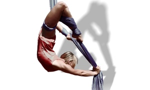 Le Cirque Vagabond: Five or Ten Aerial Silks and Pole Fitness Classes at Le Cirque Vagabond (51% Off)