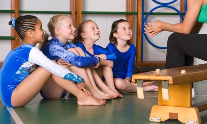 Rhythmic Art - Dania Beach: Two Gymnastics Classes a Week from Oct. 28 to Dec. 21 at Rhythmic Art