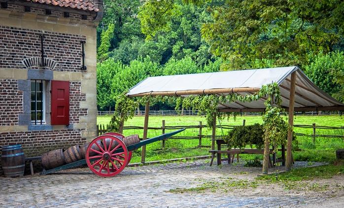 Toscana: soggiorno di 1 o 2 notti per 2 persone con colazione, cena e idromassaggio all'Agriturismo I Rondinelli