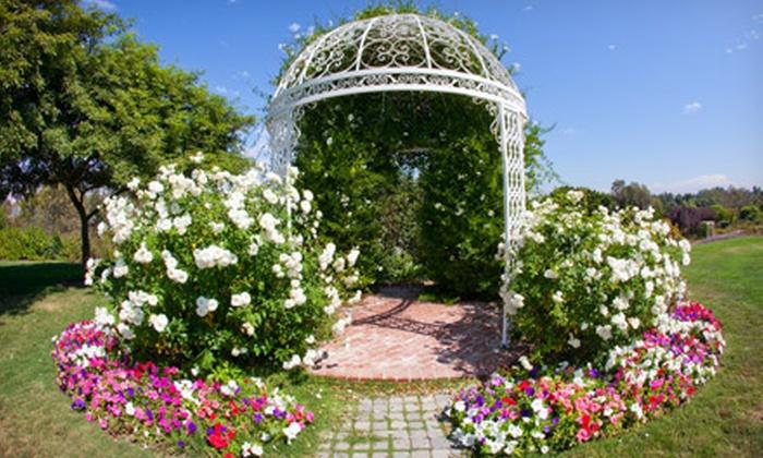 South Coast Botanic Garden - Palos Verdes Peninsula: Individual, Family, Senior, or Senior Family Membership for One Year to South Coast Botanic Garden (Half Off)