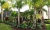 Hoffner Nursery - Conway: $20 for $40 Worth of Plants and Gardening Materials at Hoffner Nursery