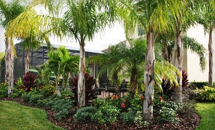$40 Groupon to Hoffner Nursery - Hoffner Nursery in Orlando