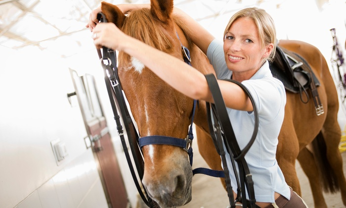 Green Acres Ranch - Willowbrook: 60-Minute Indoor Horseback-Riding Lesson for Two or Four at Green Acres Ranch (Up to 56% Off)
