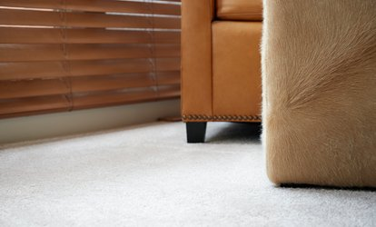 Up to 54% Off Carpet Cleaning