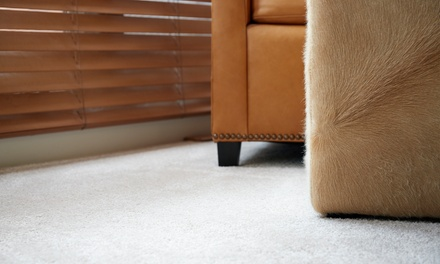 Professional Carpet Clean + Fabric Protection: 3 $59 or 5 $89 Carpets with Budget Carpet Cleaning Up to $250 Value