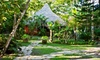Natura Cabana - Strawberry: Three- or Four-Night Stay with Two Massages at Natura Cabana in Cabarete, Dominican Republic