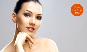 1 Or 3 Microdermabrasion Treatments With Silkpeel Dermalinfusion At Elizabeths Skincare Studio (up To 60% Off)