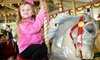 Up to 51% Off Carousel Season Passes