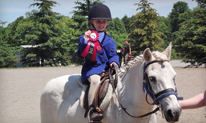 Gemstone Equestrian - Uxbridge: One or Three 60-Minute Private or Group Horseback-Riding Lessons at Gemstone Equestrian in Uxbridge (Up to 60% Off)