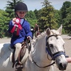 Up to 60% Off Horseback-Riding Lessons in Uxbridge