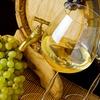 Visite guidée autour du vin, des raisins et des oliviers