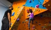 The Cave Bouldering Gym - Coleman Highlands: $39 for One Bouldering 101 Class, One Three-Visit Punch Card, and Gear Rental ($78 Value)