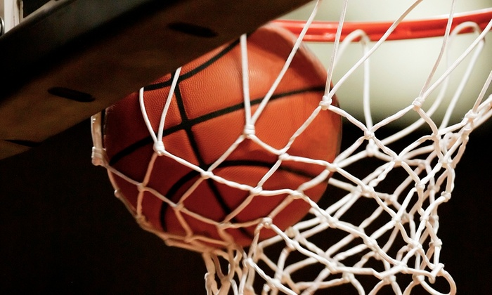 Delaware 87ers - Bob Carpenter Center: Delaware 87ers Basketball Game at Bob Carpenter Center on January 24 or 25 (Up to 54% Off)