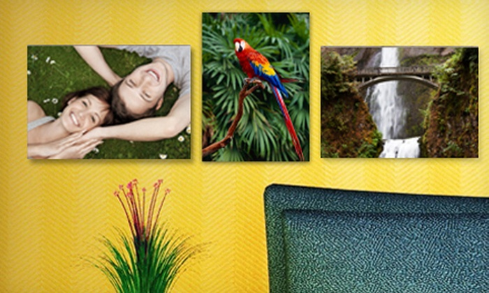 "Picture it on Canvas: $5 for 7""x10"" Metal Print from Picture It On Canvas ($65 Value)"
