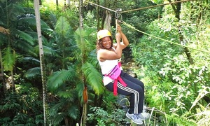 Botanical World: Zipline Adventure, Segway Adventure, or Garden Pass at Botanical World (Up to 79% Off)