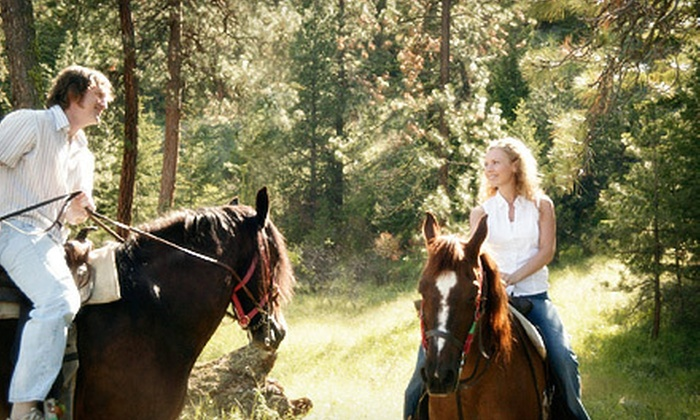 In The Breeze Horse Ranch - Tampa: 75-Minute Trail Ride for One or Two at In The Breeze Horse Ranch (Up to 53% Off)
