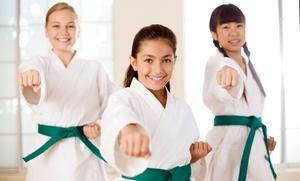 The Empty Hand Family Karate Studio: 3 Months of Unlimited Kids' Martial Arts Classes at The Empty Hand Family Karate Studio (50% Off)