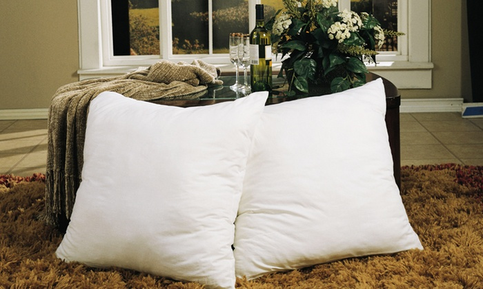 Two-Pack of Euro Square Feather Pillows: Two-Pack of Euro Square Feather Pillows