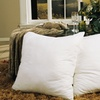 Euro Square Feather Pillows (2-Pack)