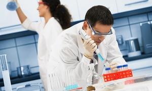Badanie Żywej Kropli Krwi: Badanie żywej kropli krwi i porada dietetyczna za 79,99 zł w Gabinecie Terapeutycznym