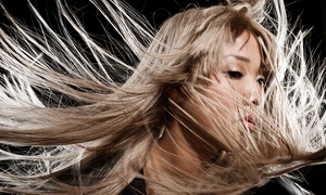 The Styling Room: Wash, Cut, Blow-Dry and Restyle with Optional Colour or Highlights at The Styling Room (Up to 62% Off)